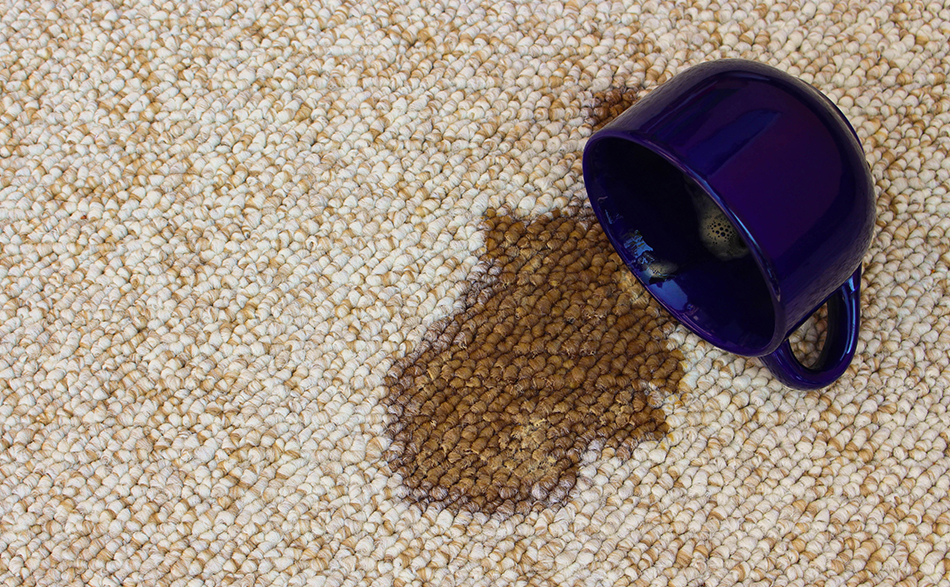 Importance Of Having A Professional Carpet Cleaning